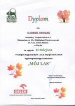 DYPLOM_LAS