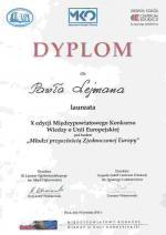 DYPLOM_MK