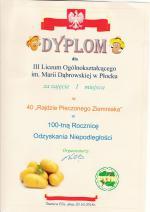 DYP2PIECZONY_ZIEMNIAK1