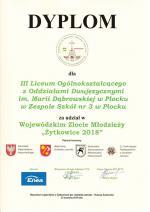 ZLOT_MłODZIEżY_żYTKOWICE2018
